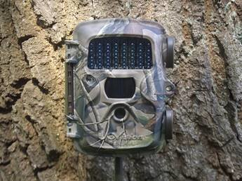 Uovision UV557 Mini 8MP wildcamera